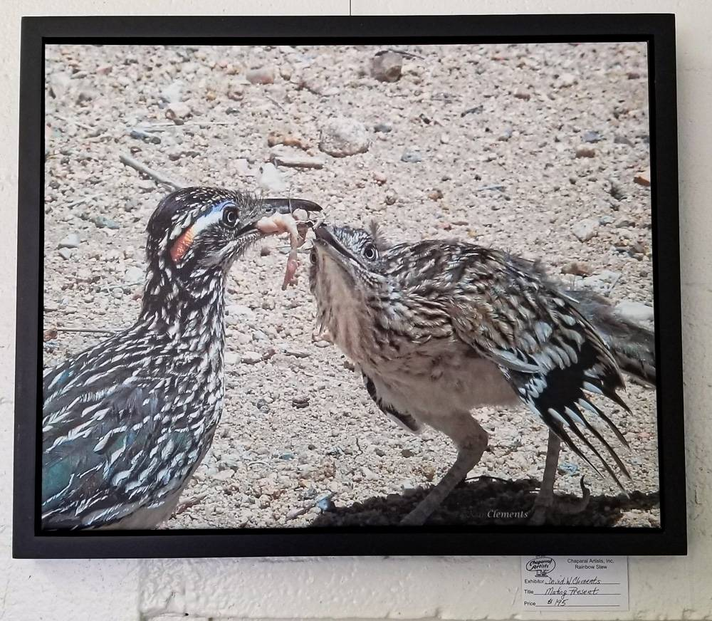 Mating Present by David Clements