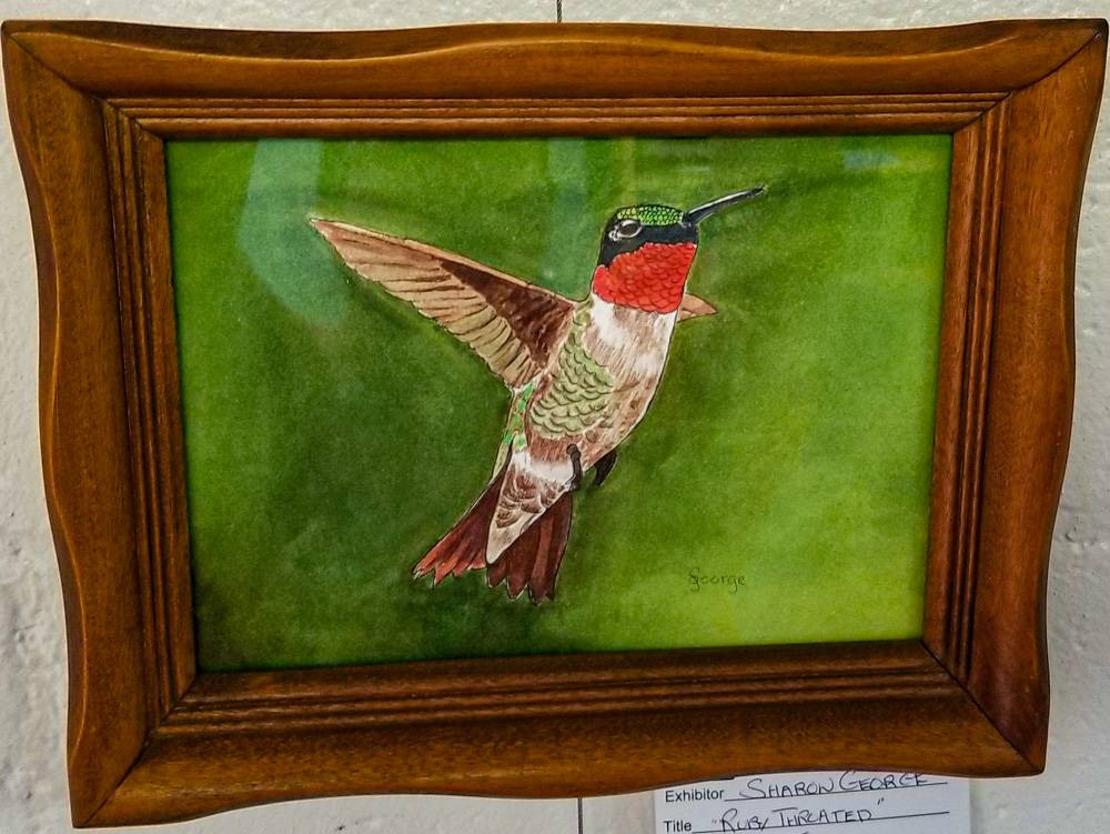 Ruby Throated by Sharon George